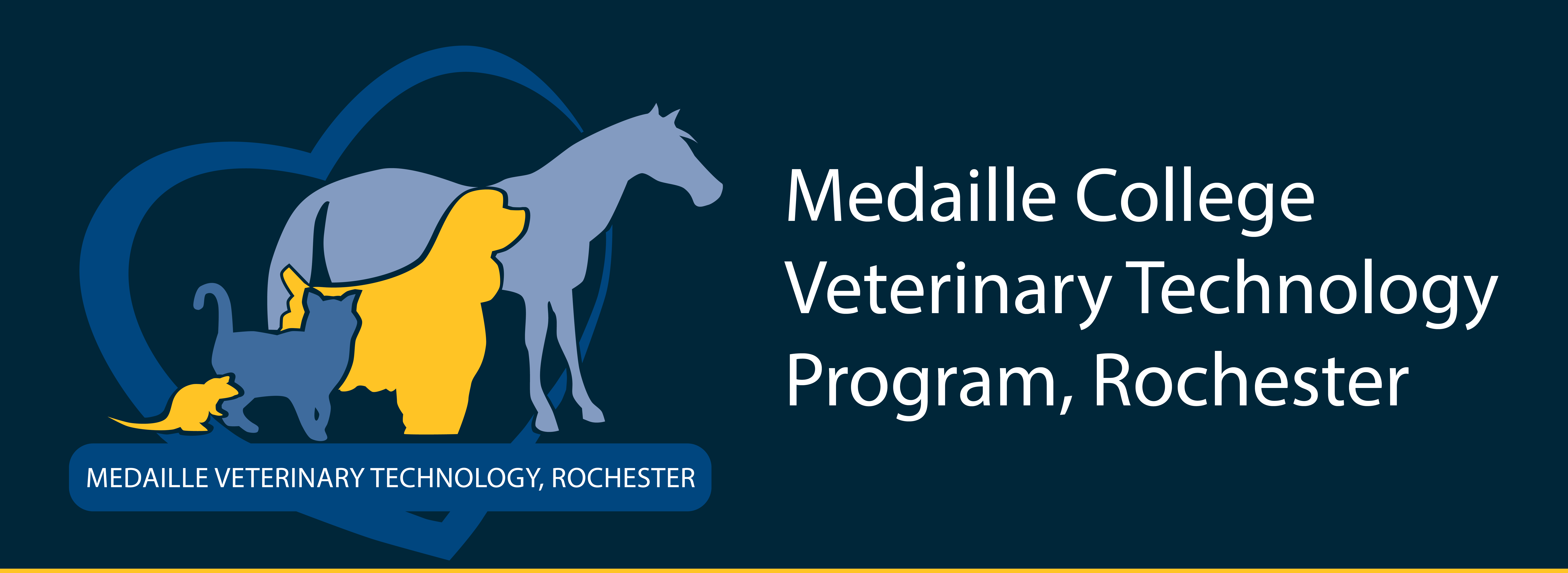 Medaille College Vet Tech Rochester Info Sessions 2020